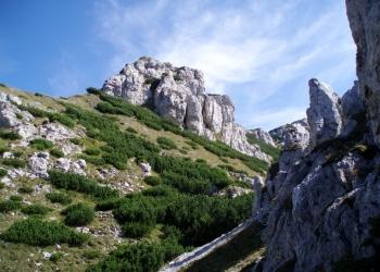 Skalní město (zvané Radové skaly),  cestou na Sivý vrch z Hut.