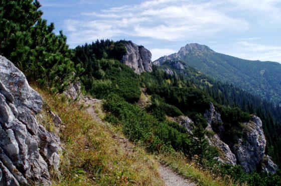 Sivý vrch (1804,5 m.n.m.)